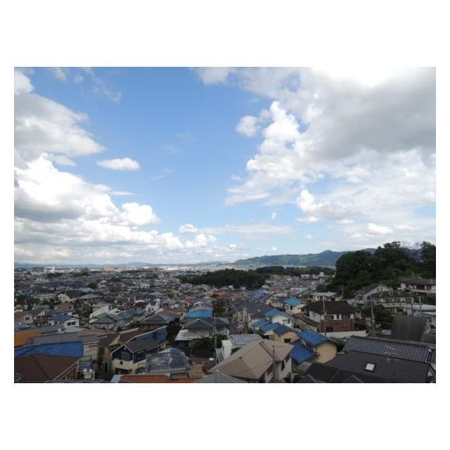 香里ケ丘グランドハイツ 5階 3LDK 画像6